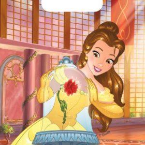Belle en het beest uitdeelzakjes