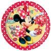 minnie mouse bordjes 2