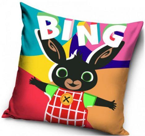 Kussenhoes Bing