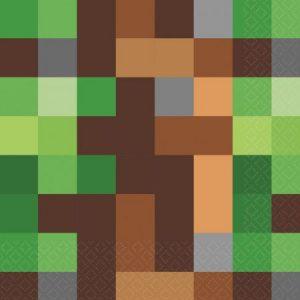 Minecraft servetten